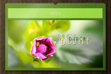 "Wall calender nature 2021 - ""Say it through the flower"" - cover"