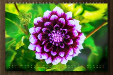 "Wall calender nature 2021 - ""Say it through the flower"" - july-picture"